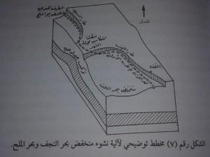 شكلر قم 7