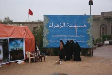 موكب مؤسسة الحكمة يواصل تقديم خدماته لزوار الإمام الحسين (عليه السلام)